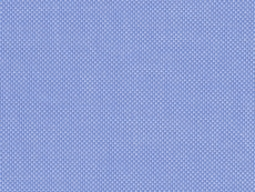 Oxford (2Ply) blue