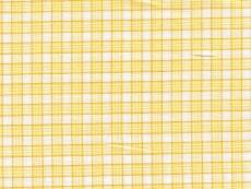 2Ply: yellow checks