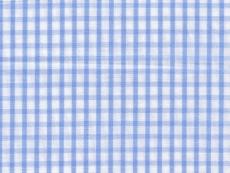 2Ply: pale blue checks