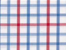 2Ply: large checks blue red