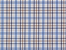 Oxford blue and brown checks