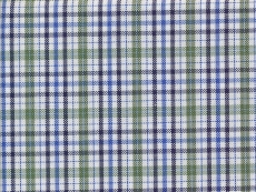 Oxford green blue checks