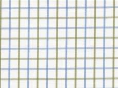 Dessin: light blue-olive checks