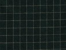 Flannel: dark green checks