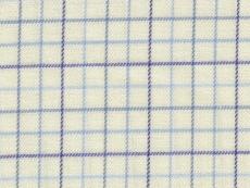Flannel: thin blue checks