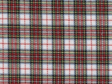 Flannel: yellow-red checks