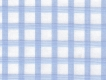 2Ply: large pale blue checks