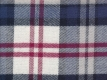 Flannel: large red blue checks