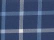 Flannel: checks blue white