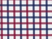 2Ply: blue and red checks