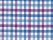 Flannel: blue-pink checks