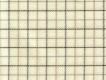 Flannel: yellow-beige checks